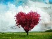 LOVE TREE - for blog
