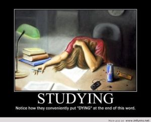 About-studying